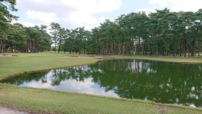 ゴルフ 紫雲